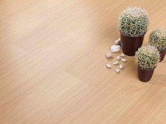 地板砖效果图 地板护理什么时候做好
