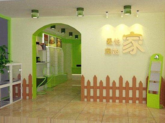 家装墙纸效果图 宠物店装修需要注意什么细节